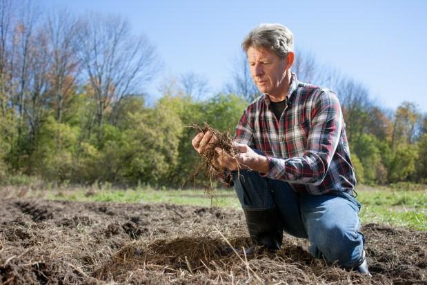 Ardanowski: TUW odgrywa ważną rolę w systemie ubezpieczeń rolnych