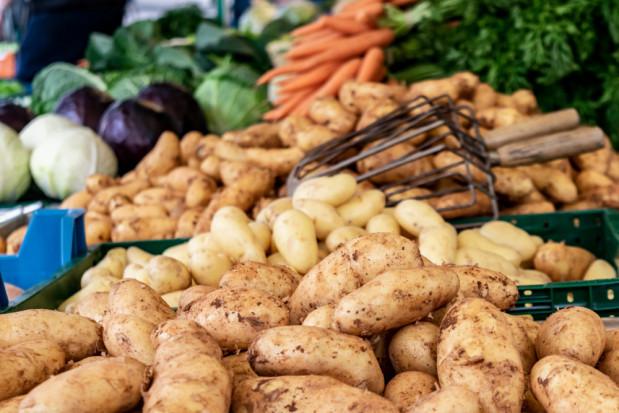 Bronisze: Duża podaż krajowych warzyw spod osłon i kapustnych z gruntu