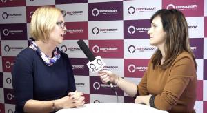 Kozarzewska, Polskie Jagody: Opłacalność uprawy borówki w Polsce staje pod znakiem zapytania (video)
