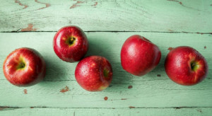Do sprzedaży w USA trafia nowa odmiana jabłek