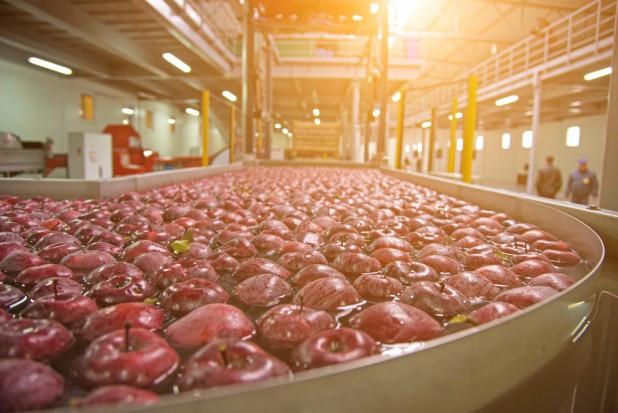 Jaką rolę w rozwoju sektora owoców i warzyw  pełnią organizacje producenckie?