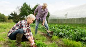 ŚIR: Ardanowski nie poparł inicjatywy obniżenia wieku emerytalnego rolników