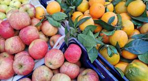 Bronisze: ceny jabłek dobrej jakości wciąż wysokie; duża podaż cytrusów