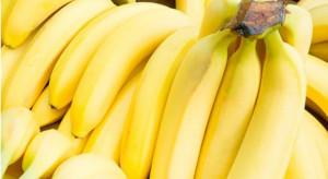 Dojrzewalnie bananów w MLP Bucharest West