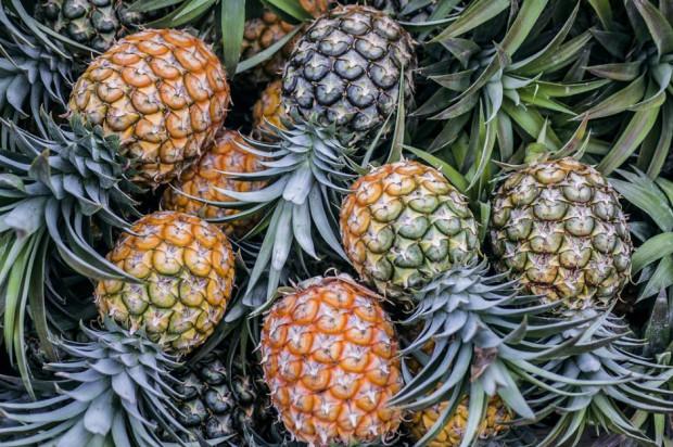 Od soboty turyści mogą wwieźć do UE tylko pięć typów owoców, np. ananasy i daktyle