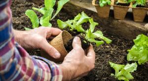 Nowe prawo zdrowia roślin – informacje dla amatorów ogrodników