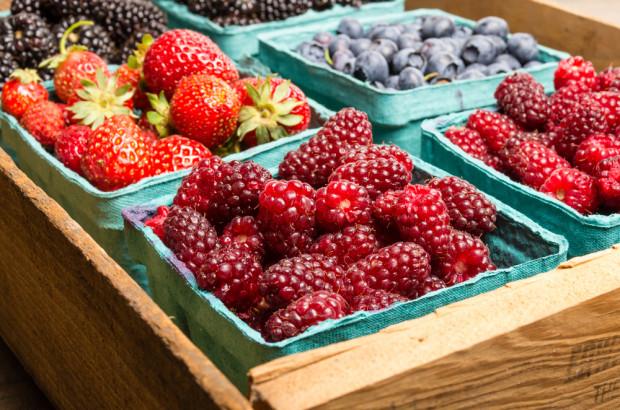 GUS: Produkcja owoców jagodowych w 2019 r. nie przekroczyła 0,5 mln ton