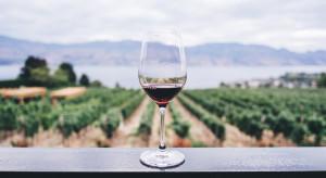 KOWR: produkcją wina w Polsce zajmuje się 295 podmiotów