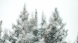 Pogoda w tym tygodniu nadal będzie przypominała tą jesienną, ale może spaść śnieg