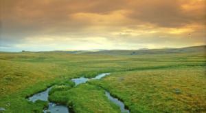 Inwestycje w gospodarstwach położonych na obszarach Natura 2000 - nabór wniosków do 28.12.