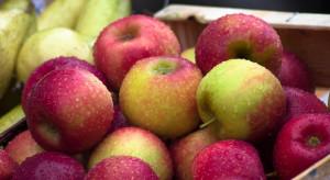 Rynek owoców w listopadzie - analiza IERiGŻ