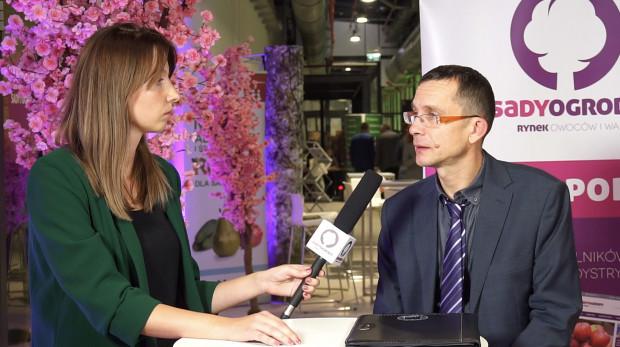 Rynek deserowy, sieci handlowe - szansą na rentowną produkcję jagodowych (wideo)