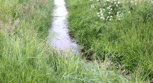 Wody Polskie mają przejąć zarząd nad melioracją