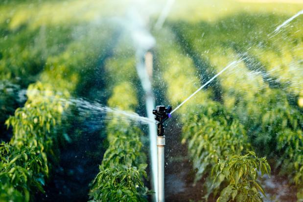 Inwestycje w nawadnianie: KRIR chce przedłużenia okresu składania wniosków