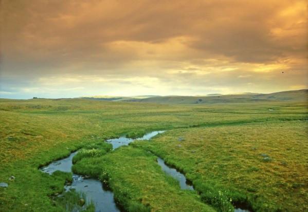 """Blisko 700 wniosków na """"Inwestycje w gospodarstwach położonych na obszarach Natura 2000"""""""