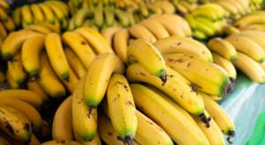 Ekwador: Spadek eksportu bananów