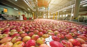Raport: Organizacje i stowarzyszenia producentów w UE wsparciem dla rolników
