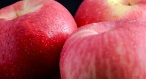 Sokołowski, Poland-Fruit: Nadchodzą dobre czasy dla polskich jabłek w Indiach