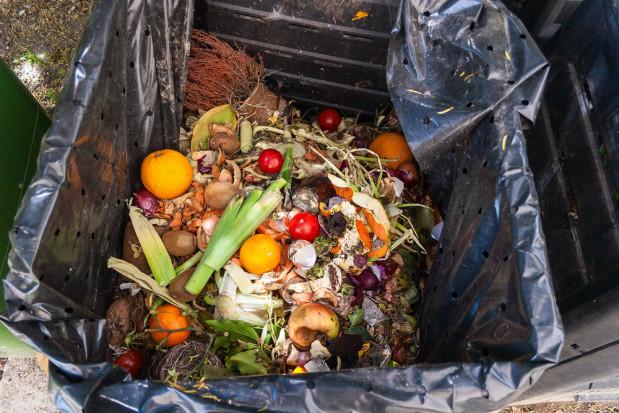 Polacy marnują żywność, bo kupują jej zbyt dużo