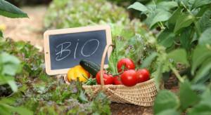 Rolnikom nie opłaca się ekologia?