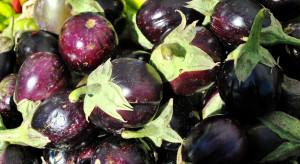 Hiszpania: Producenci wyrzucają warzywa ze względu na ich niskie ceny