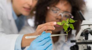 Biotechnolodzy są coraz bliżej opracowania odpornych na wirusy odmian warzyw (video)