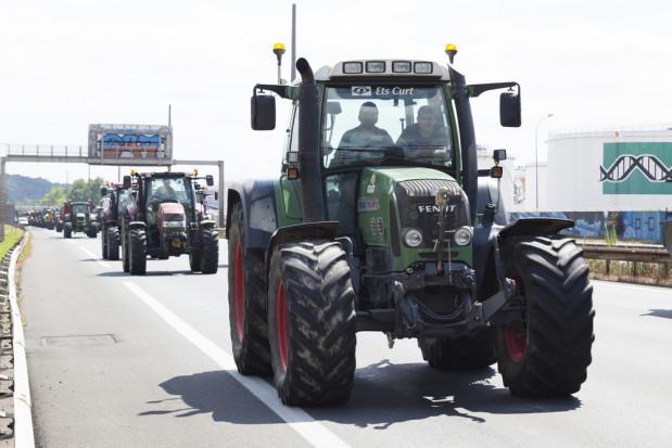 Niemcy: rolnicy protestują przeciwko polityce rządu wobec wsi
