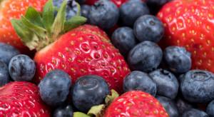 Producenci owoców jagodowych wspólnie stworzyli ciekawą ofertę dla konsumentów