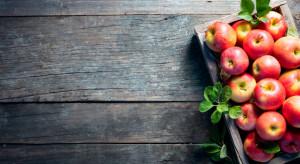 Eksporterzy jabłek obawiają się znacznego skrócenia sezonu sprzedaży