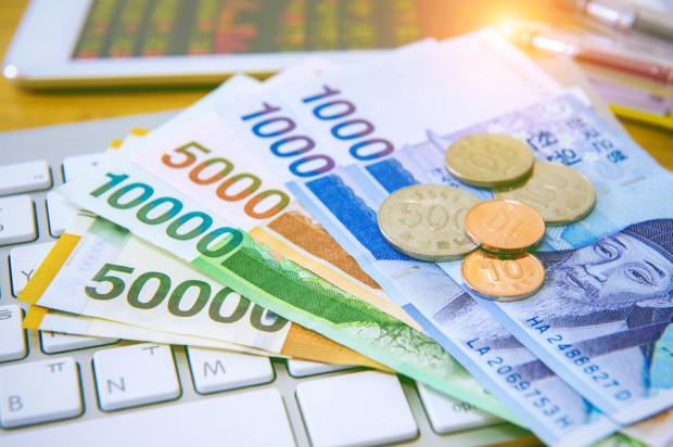 O wyrównaniu dopłat na spotkaniu ministrów rolnictwa Polski i Niemiec