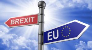 """Eksperci: """"twardy brexit"""" może oznaczać cofnięcie rozwoju handlu z Wielką Brytanią o wiele lat"""