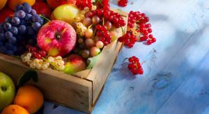 Rynek owoców i warzyw - produkcja, przetwórstwo (analiza IERiGŻ)