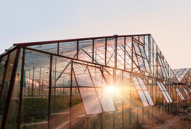Almería: 1000 ha upraw warzyw szklarniowych zniszczonych przez gradobicie