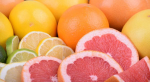 Rynek hurtowy Bronisze zachwala właściwości prozdrowotne cytrusów