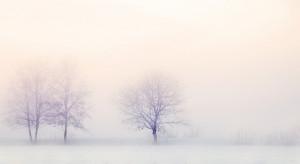 Pojawiły się pierwsze opady śniegu od początku tej zimy