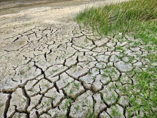 NIK sprawdzi czy efektywnie przeciwdziałano niedoborom wody w rolnictwie