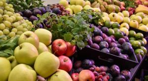 Holandia: 'sucha mgła' przedłuża świeżość warzyw i owoców w sklepach