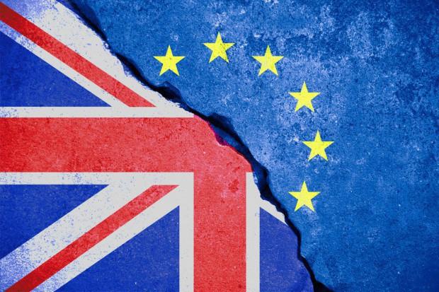 Brytyjscy rolnicy chcą demonstrować w Londynie