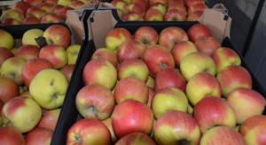 Ukraina: W ciężarówce chłodni przewożącej jabłka znaleziono młodych Afgańczyków