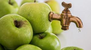 W sezonie 2018/19 odnotowano znaczny wzrost eksportu polskiego koncentratu jabłkowego