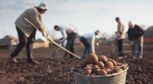 Rząd Portugalii chce zachęcić pracowników do zamieszkania na terenach wiejskich