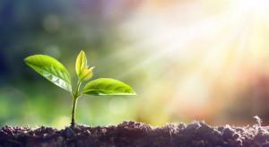 Senat: Ustawy dotyczące zdrowia roślin wracają do Sejmu