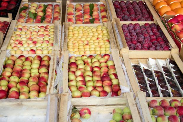 Ceny pomarańczy i jabłek spadają. Reszta owoców drożeje