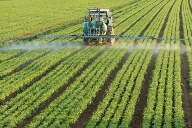 KE zapowiada działania, by obniżyć wykorzystanie pestycydów