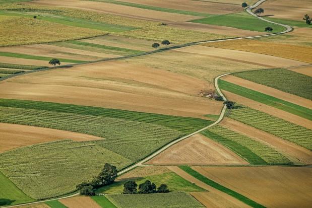Podkarpackie: Ponad 14 mln na scalenie gruntów w dwóch powiatach