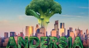 Andersia – nowa odmiana brokuła dla przemysłu przetwórczego