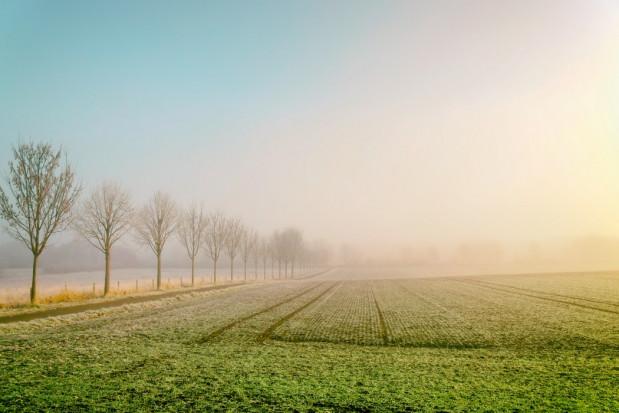 Synoptycy: Niezwykle ciepła pogoda będzie się utrzymywać
