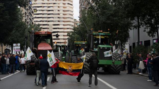 Hiszpania: Rząd wprowadzi minimalne ceny produktów rolnych