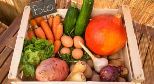 Zmniejsza się powierzchnia upraw ekologicznych w Polsce
