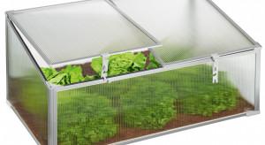 Lidl wprowadza do oferty miniszklarnie oraz tunele do uprawy sadzonek
